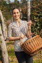 Woman Holding Basket Full Of Grapes Royalty Free Stock Photo