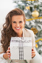 Woman holding christmas present box in front of christmas tree Royalty Free Stock Photo
