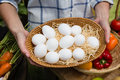 Woman holding eggs in wicker basket at vegetable stall Royalty Free Stock Photo