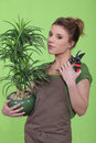 Woman holding a flowerpot Royalty Free Stock Photos