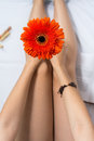 Woman holding a gerbera flower in bed Royalty Free Stock Photo