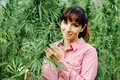 Woman holding an hemp flower Royalty Free Stock Photo
