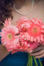Woman holding pink gerbera daisy flower bouqet Royalty Free Stock Photo
