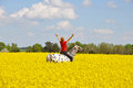 Woman and horse in rape field Royalty Free Stock Photo