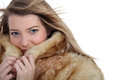 Woman ina a warm coat Stock Photography