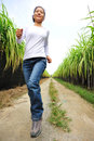 Woman jogging in sugarcane field Stock Photography