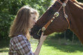 Woman kissing horse side view of muzzle of brown Royalty Free Stock Images