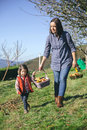 Woman and little girl carrying basket with apples beautiful women a wicker fresh organic healthy food harvest time concept Royalty Free Stock Photography
