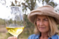 Woman looking at glass of wine in olives farm Royalty Free Stock Photo