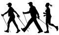 Woman and man are practicing nordic walking jogging vector Royalty Free Stock Photo