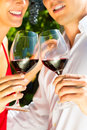 Woman and man in vineyard drinking wine Stock Images