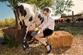 Woman milking cow Stock Photos