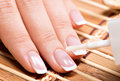 Woman in a nail salon receiving manicure by beautician beauty treatment concept Royalty Free Stock Images