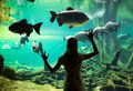 Woman at the oceanarium Royalty Free Stock Photo