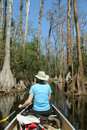 Woman Paddling a Canoe - Okefenokee Swamp Stock Photo