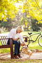 Woman pet dog beautiful middle aged playing with at the park Royalty Free Stock Images