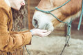Woman petting her horse.