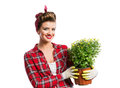Woman with pin-up hairstyle holding flower pot with yellow daisies Royalty Free Stock Photo