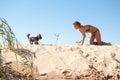 Woman play dog sea summer