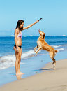 Woman playiing with dog jumping into the air young playing her adorable golden retriever at beach happy up Stock Photography