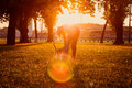 Woman playing with her dog in the park at sunset blonde Stock Image