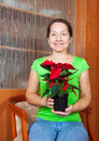 Woman with Poinsettia flowers in flowering pot Royalty Free Stock Photography