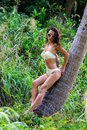 Woman posing on the palm tree beautiful Royalty Free Stock Image