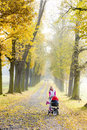 Woman with a pram on walk in autumnal alley Stock Images