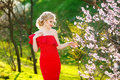 Woman or pretty girl, cute model, with long, blonde hair posing at blossoming tree with flowers in spring garden on Royalty Free Stock Photo