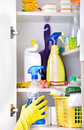 Woman putting spray bottle in pantry Royalty Free Stock Photo