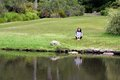 Woman reading newspaper sitting in grass Stock Image