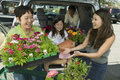Woman receiving tray of flowers from mother happy women with family in car Royalty Free Stock Images