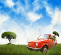 Woman in red car on a meadow Royalty Free Stock Photo
