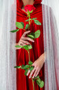Woman in red cloak wearing holding rose Royalty Free Stock Photo
