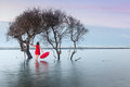 Woman in red dress with red umbrella on folly beach near charleston south carolina at daybreak Royalty Free Stock Photos