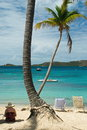 Woman relaxing under palm tree caribbean sea surrounding the island of st thomas us virgin islands one with sunhat sitting shade Royalty Free Stock Image