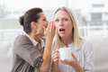 Woman revealing secret to her surprised friend Royalty Free Stock Photo
