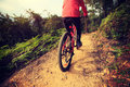 Woman riding bike on forest mountain trail Royalty Free Stock Photo