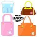 Woman`s bags set.