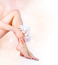 Woman s feet hands manicure pedicure concept Stock Photos