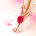 Woman s feet hands manicure pedicure concept Royalty Free Stock Photos
