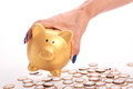 Woman's hand holding piggy bank and coins of the Brazilian money Royalty Free Stock Photo