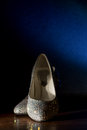 Woman s swarovski crystal shoes bride glittering white pumps with crystals Stock Photography