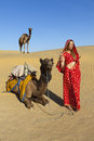 Woman in a sari with camels. Royalty Free Stock Image