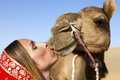 Woman in sari riding a camel. Royalty Free Stock Image