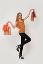 Woman with shopping Stock Image