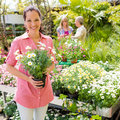 Woman shopping for flowers at garden center Stock Photos