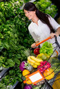 Woman shopping organic Royalty Free Stock Image