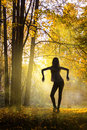 Woman silhouette over autumn forest attractive full length figure yellow in the early morning background Royalty Free Stock Images