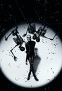 Woman in skull make up and black skeletons studio Stock Image